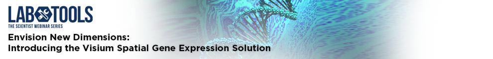 Envision New Dimensions_990x120-2